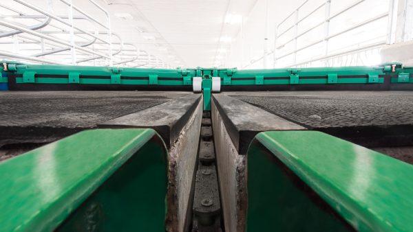 DairyFarming Pintle Chain Scraper 1 tcm11 14329